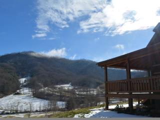 Cozy House with Washing Machine and Mountain Views - Clyde vacation rentals