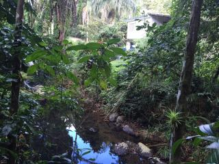 Rainforest Secluded Retreat house with WiFi, Cubuy - Rio Grande vacation rentals