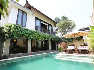 Executive Suite - two bedrooms villa - Seminyak vacation rentals