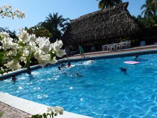 110m beachfront Great Villa in Barra de Potosi - Zihuatanejo vacation rentals