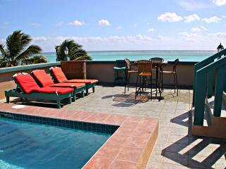 Private 4-5 BR Beachfront Home with Rooftop Pool - San Pedro vacation rentals