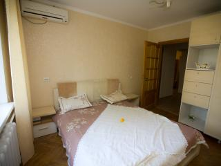 Nice and Big Flat in City Center - Chisinau vacation rentals