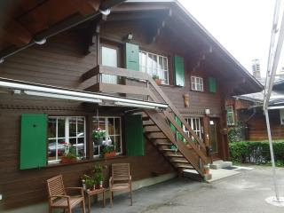 Mooi Appartement in de Berneralpen - Habkern vacation rentals