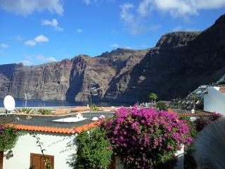 2 bedroom Apartment with Dishwasher in Acantilado de los Gigantes - Acantilado de los Gigantes vacation rentals