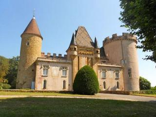 Annexe Chateau - Charmante maison - Chaintre vacation rentals