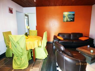 Charmant chalet confortable idéalement situé pour découvrir les Hauts de l'Île - Le Tampon vacation rentals