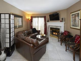 Executive Condo in Waterloo Region - Kitchener vacation rentals