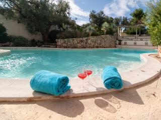 Apartment and Pool Inside Park - Racale vacation rentals