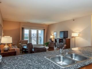 1 bedroom Apartment with Internet Access in Glenview - Glenview vacation rentals