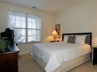 Comfortable 1 bedroom Condo in Naperville - Naperville vacation rentals