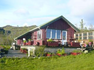 A cottage in the county  Mýrdalur in south Iceland - Vik vacation rentals