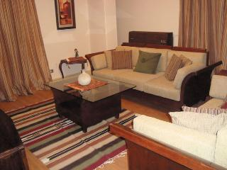 Modern Classy  App. in Spot Area in Heliopolis - Cairo vacation rentals
