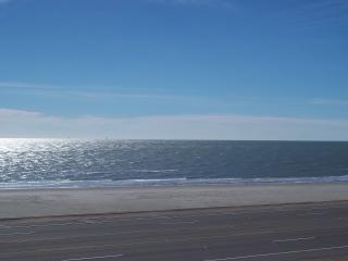 Across from Babe Beach / 2 BR Oceanfront Condo - Galveston Island vacation rentals