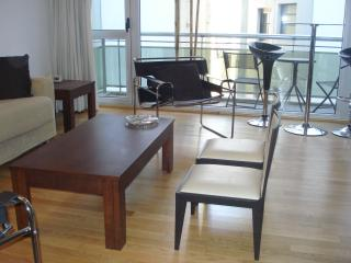 Apartment in Down town - Buenos Aires vacation rentals