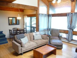 2 bedroom Condo with Hot Tub in Steamboat Springs - Steamboat Springs vacation rentals