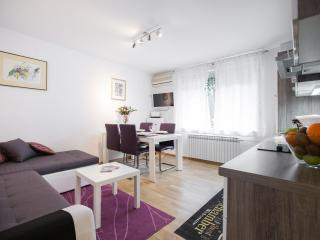 Beautiful 2 bedroom Condo in Zagreb with A/C - Zagreb vacation rentals