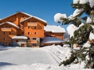 Lovely Condo with Dishwasher and Short Breaks Allowed - Les Carroz-d'Araches vacation rentals