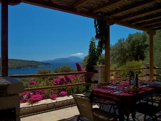 Nice Condo with Balcony and Linens Provided - Vasiliki vacation rentals