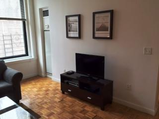 Amazing 1 Bedroom Apartment in Financial District - High Rise Building - New York City vacation rentals