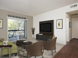 Clean and Bright 1 Bedroom Apartment in Dublin - San Ramon vacation rentals