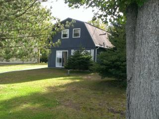 Lakefront on beautiful, all sports, Lily Lake - Harrison vacation rentals