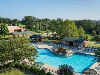 BRANSON ***King Studio*** WG Branson Woods Resort - Branson West vacation rentals