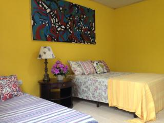 Nice Bed and Breakfast with Internet Access and A/C - Trindade vacation rentals