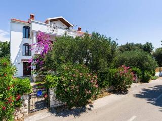 4468 A3 Tea(2+2) - Petrcane - Petrcane vacation rentals
