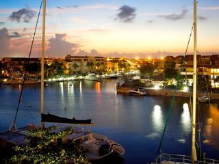 Riviera Maya Casa Turquesa - Puerto Aventuras vacation rentals