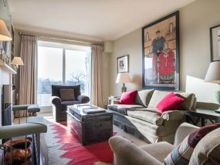 A chic two-bedroom apartment with fantastic views in Notting Hill. - London vacation rentals