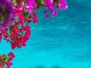 Residence with Sea View in Monemvasia - Monemvasia vacation rentals