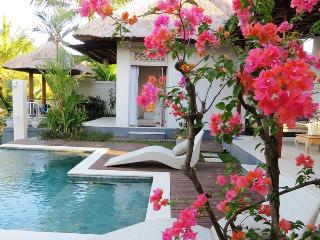 Villa Kolibri 3 bedroom Luxury! - Ubud vacation rentals