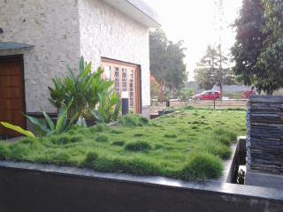 A Villa/luxury house/peaceful retreat in a resort - Bangalore vacation rentals