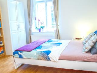 Lovely appartement in the city center - Prague vacation rentals