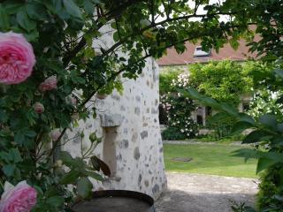 Chambre d'Hôtes de Cilia près Senlis Parc Asterix Mer de sable Sud Oise - Senlis vacation rentals