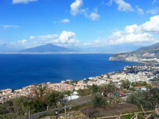 Sea's Overview House  is between sea and mountain. - Sorrento vacation rentals