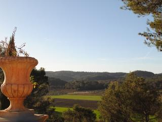 Comfort holidays with pool & view in the Provence - Montfort-sur-Argens vacation rentals