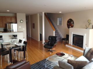 Economic and Perfect in Chicago - Chicago vacation rentals