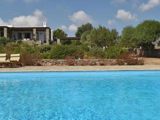 Villa Suerte - Naoussa vacation rentals