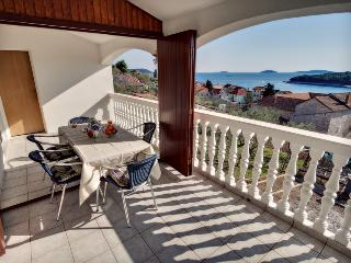 Paradise island apartment! - Prvic Luka vacation rentals