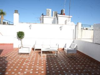 3 Bdroom Apartment, Big private Terrace - Seville vacation rentals