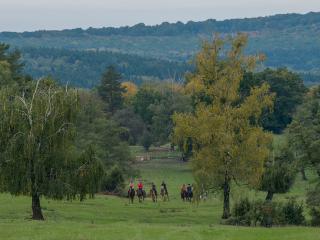 Transylvania Farming Experience - Brasov vacation rentals