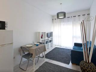 Sunny Apartment In City Center - Porto vacation rentals