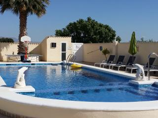 Large Luxury Private Holiday Villa with Pool Between La Marina & San Fulgencio. - San Fulgencio vacation rentals