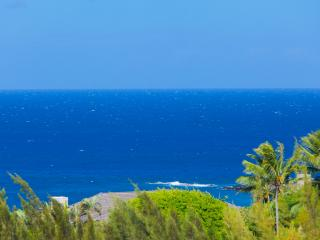 Fabulous Ocean/Golf Views +Indoor/Outdoor Living - Lahaina vacation rentals