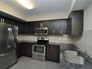 1 Bedroom Apartment Avail From May To Sept - Waterloo vacation rentals