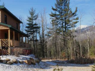 Marble Mountain Chalet - Wilmington vacation rentals