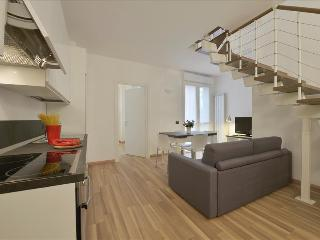 3bdr steps from Milan Politecnico - Milan vacation rentals