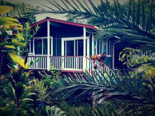 Cottage Hale Huna and Breakfast - Naalehu vacation rentals