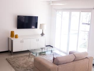 Brand New Modern one bedroom apartment 2 bathrooms - San Jose vacation rentals